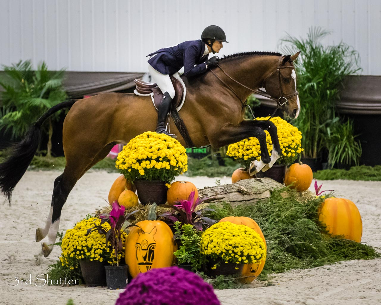 Top Hunter Riders Compete During Wec Fall Series World
