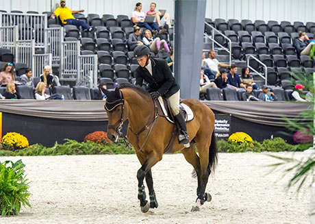 live-streaming-horse-show-events