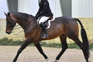 Week #13's $2,500 USHJA National Hunter...