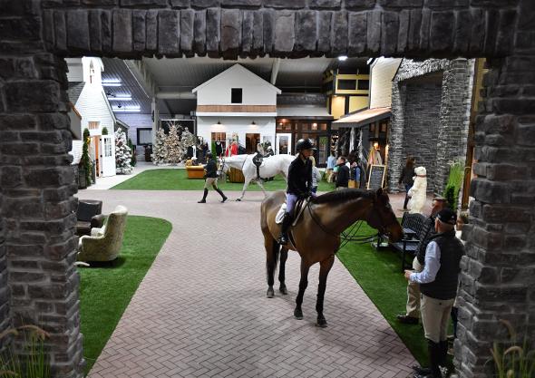 wilmington equestrian center amenities interior arena rider horse crowd