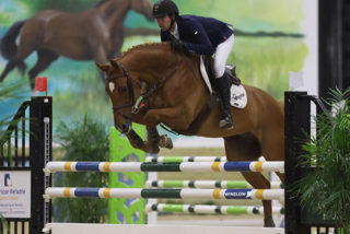 Another Win for Ryan Genn & VDL Gerinus T...