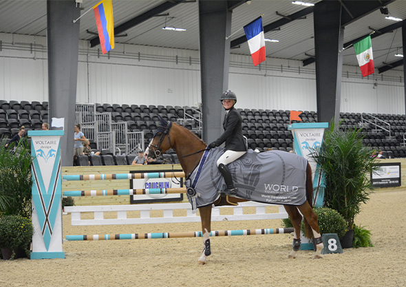 ocala equestrian center rider on horse in arena sponsorships