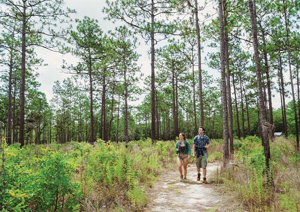 ocala nature trails man and woman walking