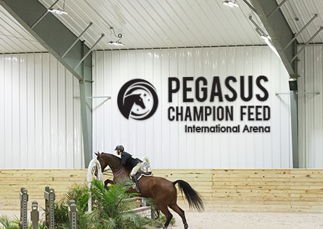 wilmington equestrian center sponsorship opportunities sponsored arena