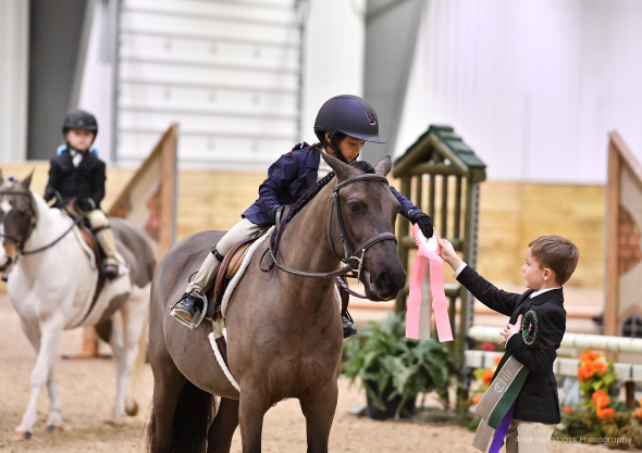 wilmington equestrian center horsemanship credits ride handing ribbon to young boy