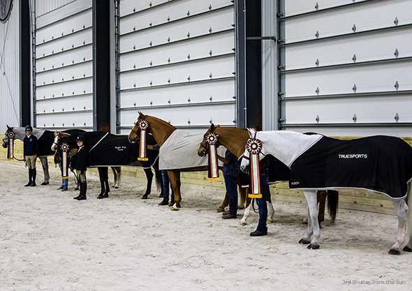 wilmington equestrian center prize list winning horses with ribbons