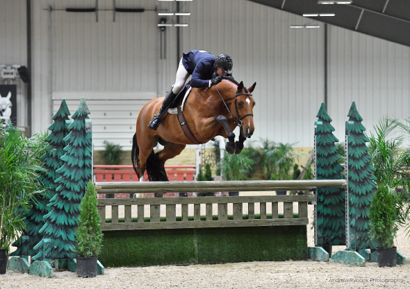 wilmington equestrian shows horse and ride jump hunters competition
