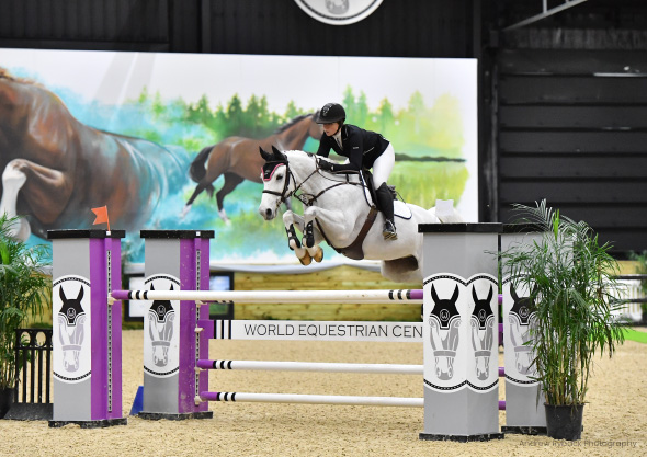 wilmington equestrian shows showjumping