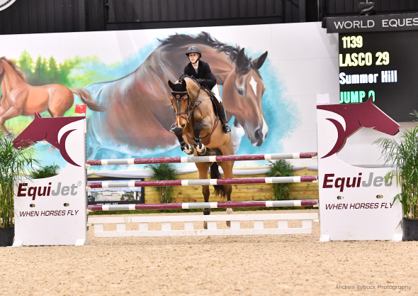 wilmington equestrian shows jump off competition