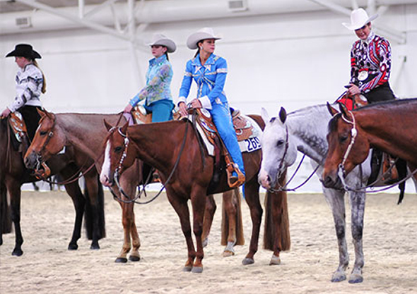 wilmington equestrian shows western competition