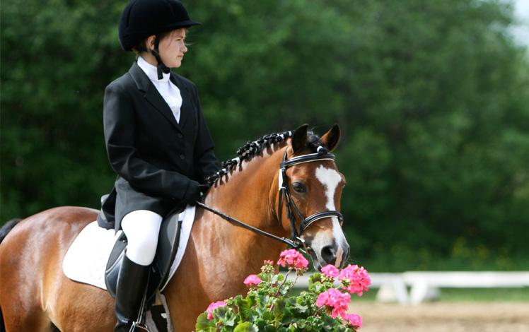 Roberts Arena Sponsors US Pony Finals